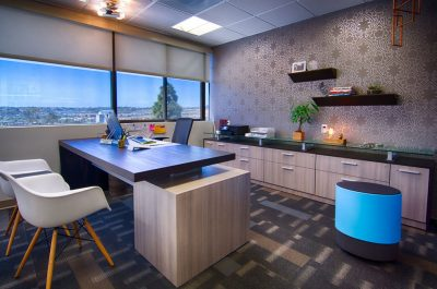 San-Diego-Office-Design-3-Tamara-Exec-office