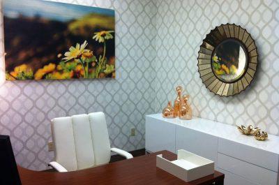 workspace-5-exec-office-feminine
